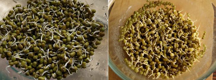 Potato and Green Sprouts Sandwich Stuffing Peparation